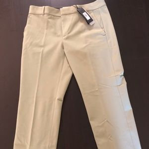 Banana Republic Sage Green Avery Pants